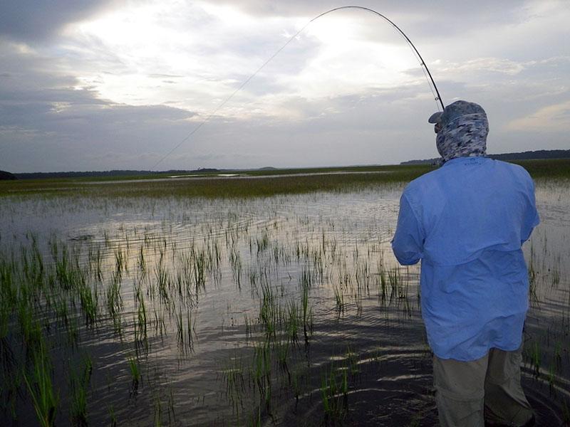Fish On'